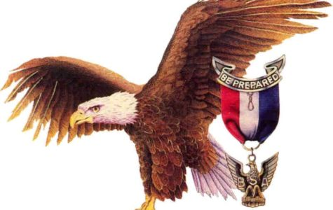 Eagles Soar and Salute