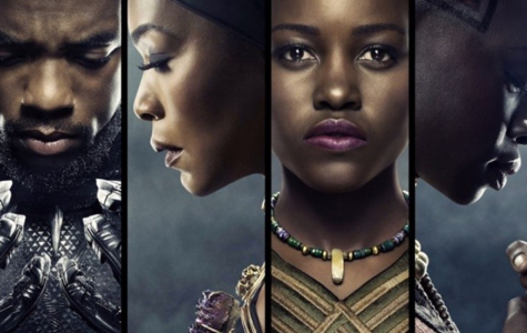 Wakanda Forever: Black Panther Movie Review