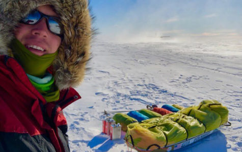 Alone in Antarctica? Not for These Two!