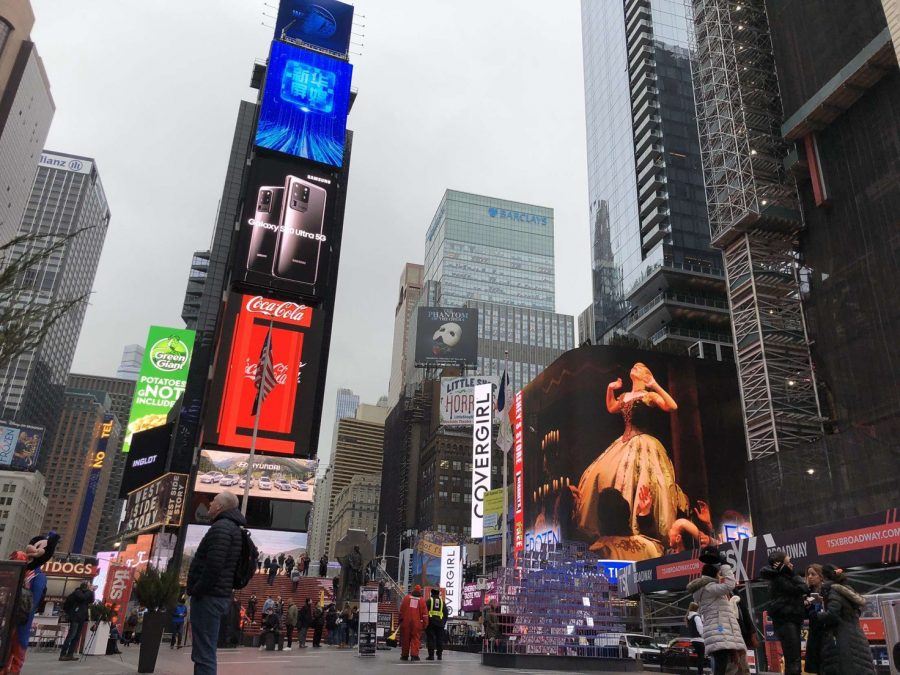 new+york+picture+2