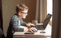 Online School Interview: Amy Knox