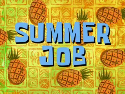 Where Should You Work This Summer?
